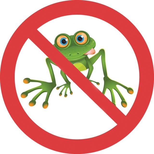 Små grodorna förbud väder midsommar