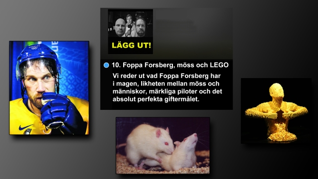 Foppa Forsberg 2000aldrig Sergio Canavero LEGO KLM humor, satir
